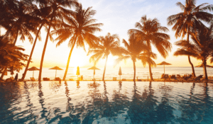 a blue tiled infinity pool looking over a beach with people in lounge chairs, the ocean, and palm trees during the sunset